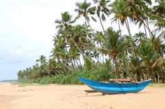 The traditional Sri Lanka's boat for fishing Royalty Free Stock Photo