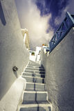 Traditional steps leading to house in Santorini Island Royalty Free Stock Image