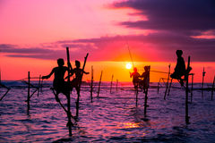 The Traditional Stilt Fishermen in Srilanka. The Traditional Stilt Fishermen at sunset in Srilanka Royalty Free Stock Image