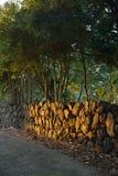 Traditional Stone boundary of Jeju Island Royalty Free Stock Images
