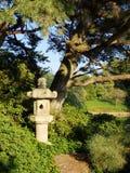 Stone lantern in Japanese garden. Traditional stone lantern in Japanese style garden under pine trees Stock Photo