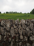 Traditional Stone Wall Around Green Meadow in Ireland Stock Photo