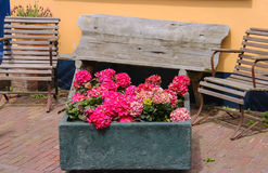 Traditional street decoration with flowers and wooden chairs Royalty Free Stock Photography