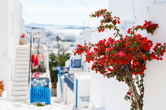 Traditional street of Mykonos island in Greece Stock Photo