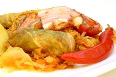 Traditional stuffed cabbage Stock Photography