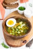 Traditional summer Russian soup with sorrel, green bosch, delici. Traditional summer Russian soup with sorrel, green bosch Stock Images