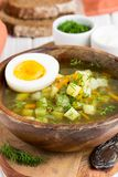 Traditional summer Russian soup with sorrel, green bosch, delici. Traditional summer Russian soup with sorrel, green bosch stock photo