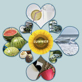 Traditional summer scenes Stock Photos