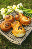 Traditional swedish buns. A saffron bun, in Swedish lussebulle Royalty Free Stock Image
