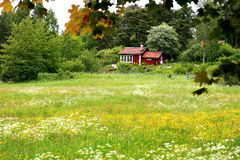 Traditional Swedish cottage Royalty Free Stock Photography