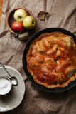Traditional autumn pies Stock Photography