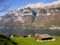 Traditional swiss landscape. This wonderful lake named walensee,we can find it near zurich Stock Photos