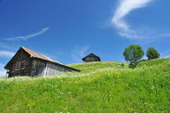 Traditional swiss log cabins in meadows Stock Photography