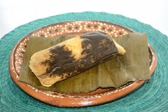 Traditional mexican mole tamal from Oaxaca state for Candelaria Day celebration Stock Image