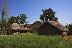 Traditional taru houses in Terai, Nepal Stock Image