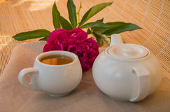Traditional tea ceremony. Brewed green  in teapot and Cup Royalty Free Stock Photography