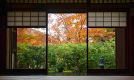 Wood frame doorway and tatami mats in traditional Japanese tea room in autumn. A traditional tea room in Kyoto`s Rurikoin Institue with the exterior doors opened Royalty Free Stock Photo
