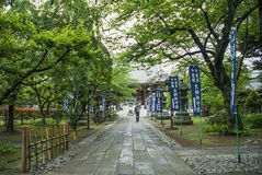 Temple garden in kyoto japan Stock Photography