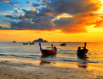 Traditional thai boats at sunset beach Royalty Free Stock Image