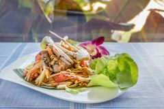 Spicy green papaya salad. Traditional thai cuisine spicy green papaya salad with crab Stock Photos
