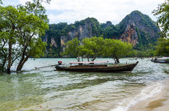 Traditional Thai Longtail boatin mangroves . Stock Images
