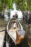 Traditional Thai Longtail boatin mangroves . Stock Image