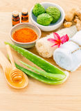 Traditional of thai skin care ingredients. Stock Images