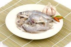 Traditional Thai style raw preserved fish(thai name is Pla-ra) Stock Photos