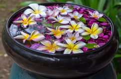 Traditional thailand perfume water mixes. With flowers Stock Photos