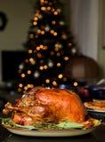 Traditional Thanksgiving turkey Stock Image