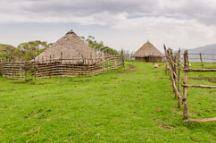 Traditional thatch, clay and wood houses of sheep farmer in highlands of Cameroon, Africa Stock Photos