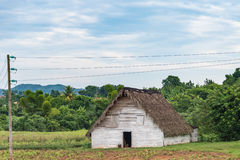 Traditional Tobacco House in Pinar del Rio,Cuba Stock Photography