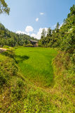 Traditional Toraja village in idyllic rural landscape Stock Photos