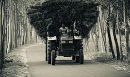 Traditional tractor vehicles with passengers running in an urban road of Bangladesh Royalty Free Stock Photo