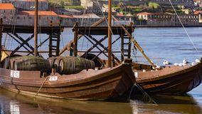 Traditional transport boats in Porto stock video