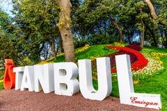 Traditional Tulip Festival in Emirgan Park in Istanbul,Turkey Stock Photos
