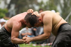 Traditional Turkish Oil Wrestling Royalty Free Stock Photos