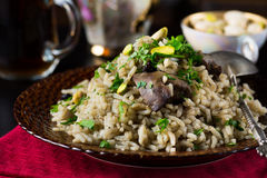 Traditional turkish pilaf with chicken liver and pistachios Stock Images