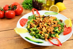 Traditional Turkish Salad and chicken Food. Traditional Turkish Food and Concept Royalty Free Stock Photo