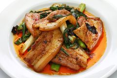 Traditional twice cooked pork. Sichuan style chinese dish Stock Photos