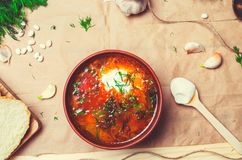 Traditional Ukrainian borsch, red beet soup, borshch with beet, Ukrainian and russian national food stock photography