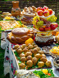 Traditional ukrainian food Stock Photography