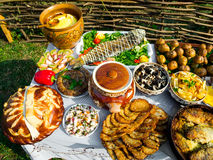 Traditional ukrainian food Stock Images