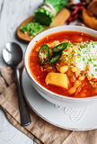 Traditional ukrainian hot soup Royalty Free Stock Photography