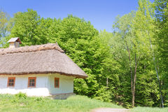 Traditional ukrainian rural house Stock Photography