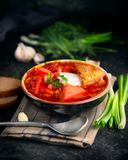 Traditional Ukrainian russian borscht. Plate of red beet root soup borsch on black rustic table. Beetroot soup. Ukrainian cuisine stock photography
