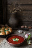 Traditional Ukrainian or Russian borscht with sour cream and garlic Royalty Free Stock Images