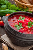 Traditional Ukrainian Russian vegetable borsch Stock Images