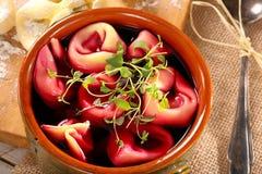 Traditional Ukrainian Russian vegetable borscht with dumplings a Royalty Free Stock Photos