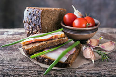 Traditional ukrainian sandwiches with brown rye bread, smoked la. Traditional ukrainian sandwiches made of brown rye bread and smoked lard on a piece of brown Royalty Free Stock Image